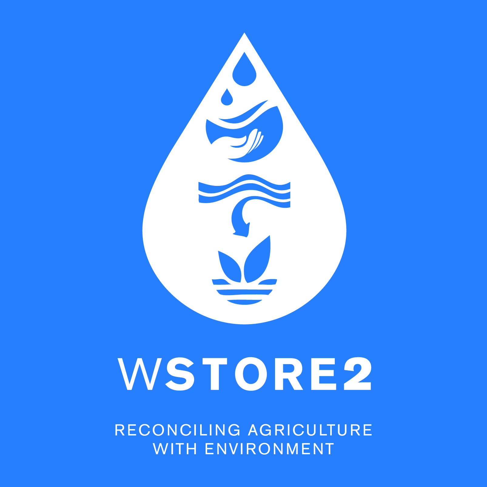 logo_WSTORE2
